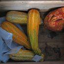 Роспотребнадзор назвал признаки несвежих овощей